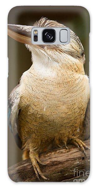 Kookaburra Galaxy Case