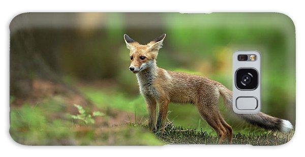 Furry Galaxy S8 Case - Red Fox by Milan Zygmunt