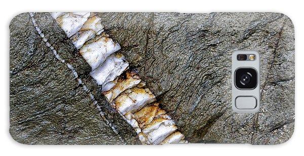 Rock Art Galaxy Case by Shirley Mitchell