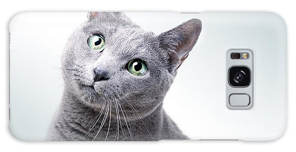 Cat Galaxy Case - Russian Blue Cat by Nailia Schwarz