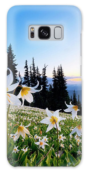Ecosystem Galaxy Case - Usa, Washington State, Olympic National by Gary Luhm