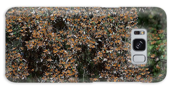 Monarch Butterflies Galaxy Case