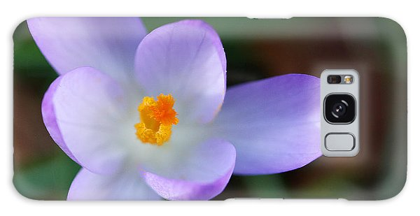 Vibrant Spring Crocus Galaxy Case