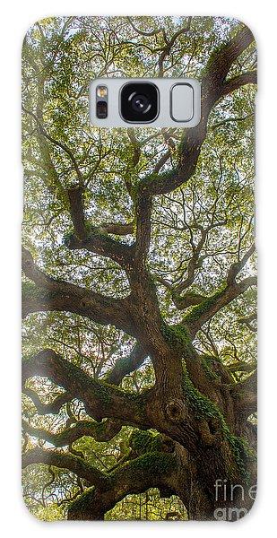 Island Angel Oak Tree Galaxy Case