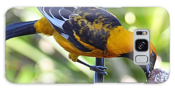 Spot-breasted Oriole Galaxy Case