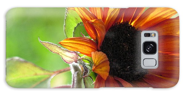 Sunflowers  Galaxy Case by France Laliberte