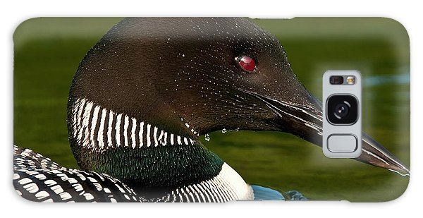 Common Loon Galaxy Case