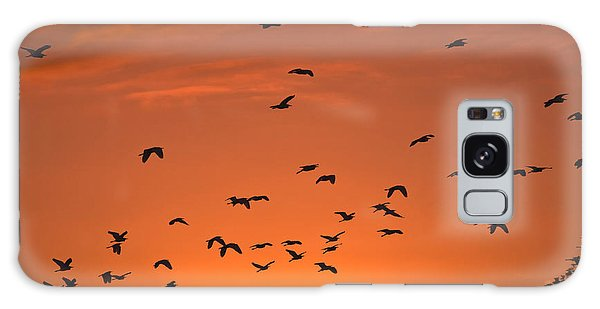 Birds At Sunset Galaxy Case by Sally Weigand