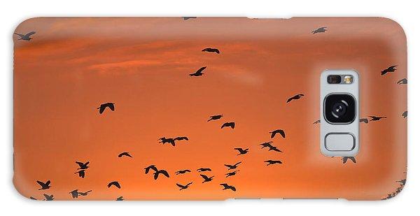 Birds At Sunset Galaxy Case