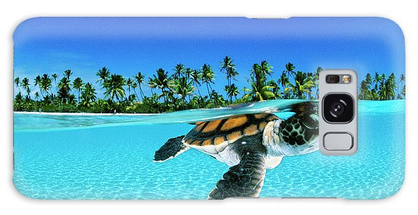 Turtle Galaxy Case - A Baby Green Sea Turtle Swimming by David Doubilet
