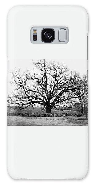 A Bare Oak Tree Galaxy Case