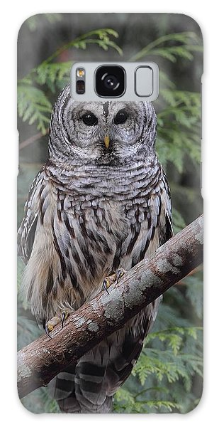 A Barred Owl Galaxy Case