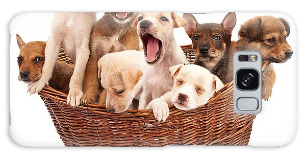 A Basket Of Puppies  Galaxy Case