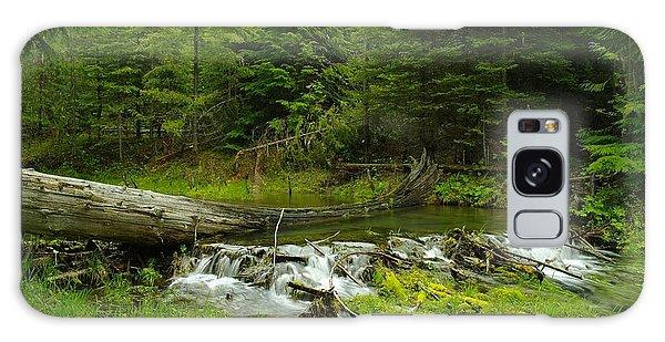 A Beaver Dam Overflowing Galaxy Case by Jeff Swan