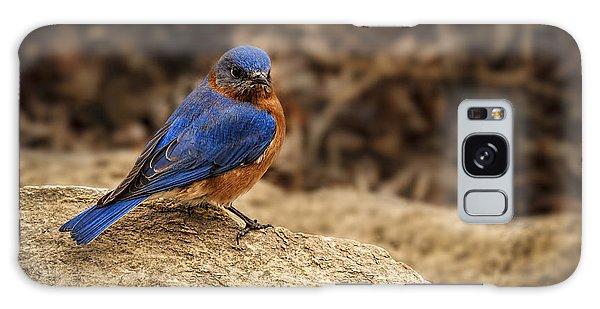 A Bluebird In Kansas Galaxy Case