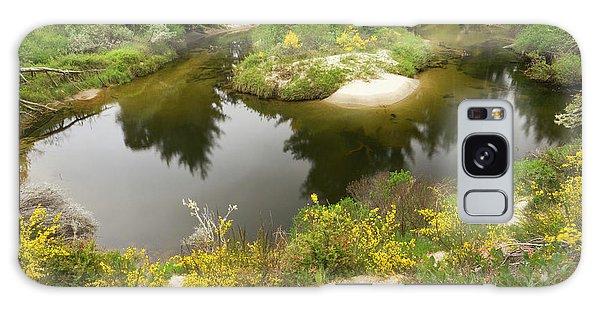 Ecosystem Galaxy Case - A Brackish Creek Runs by William Sutton