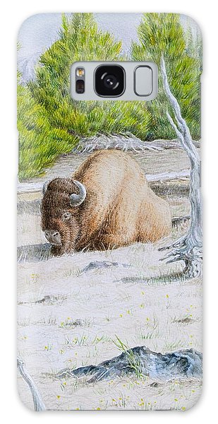 A Buffalo Sits In Yellowstone Galaxy Case