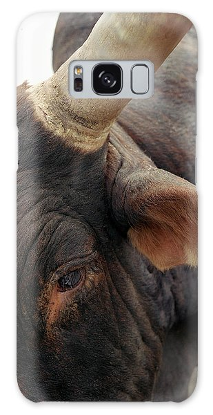 Prca Galaxy Case - A Bull Waits At A Prca Professional by Matthew Wakem