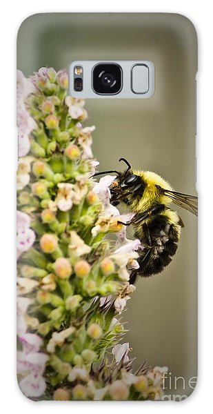 A Bumble Bee Working Galaxy Case