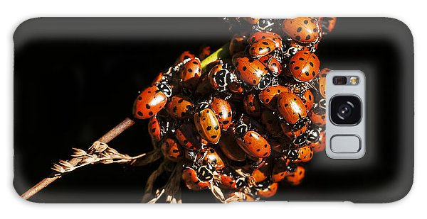 A Bunch Of Ladybugs Galaxy Case