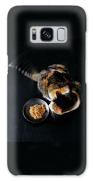 A Cat Beside A Dish Of Cat Food Galaxy Case