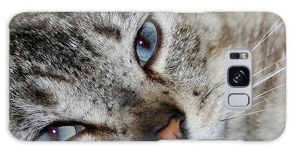 A Cat Named...blue Galaxy Case by Barbara S Nickerson