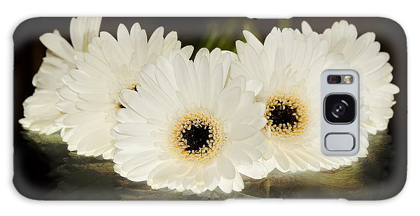 A Cluster Of White Gerber Daisies Galaxy Case by MaryJane Armstrong