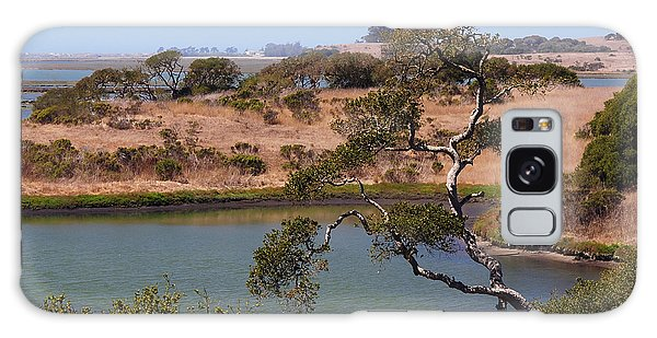 A Cove In Late Summer At Elkhorn Slough Galaxy Case