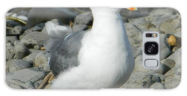 A Curious Seagull Galaxy Case by Chalet Roome-Rigdon