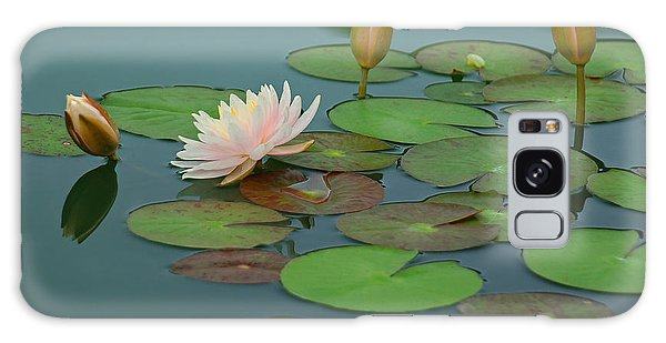 A Day At The Lily Pond Galaxy Case by Suzanne Gaff