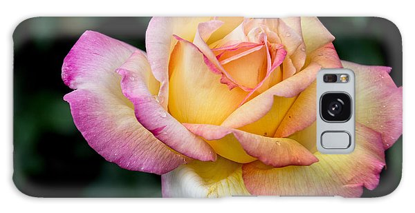 A Delicate Rose Galaxy Case by Gerda Grice
