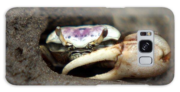 A Fiddler Crab Around Hilton Head Island Galaxy Case
