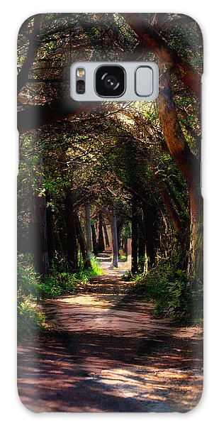 A Forest Path -dungeness Spit - Sequim Washington Galaxy Case