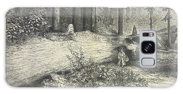 Calavera Galaxy Case - A Forest Scene by British Library