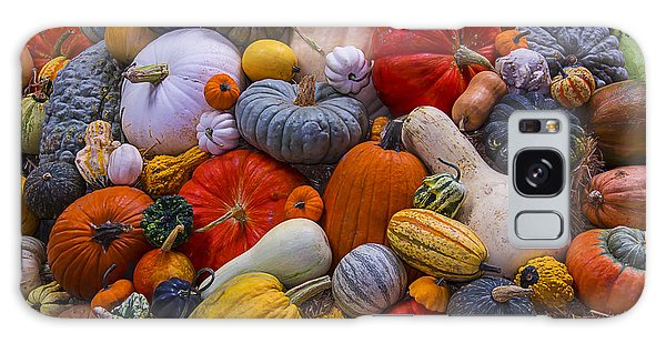 Gourd Galaxy Case - A Great Harvest by Garry Gay