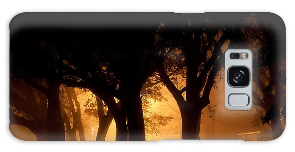 A Grove Of Trees Surrounded By Fog And Golden Light Galaxy Case