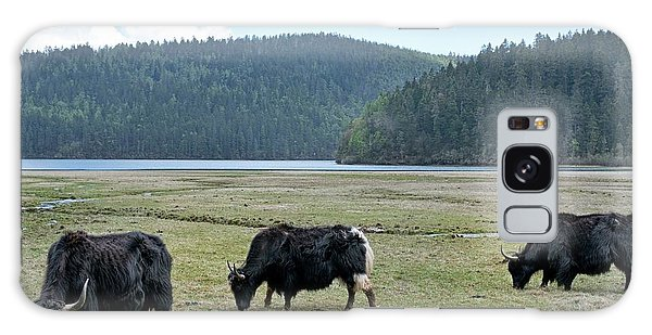 A Herd Of Yaks In Potatso National Park Galaxy S8 Case
