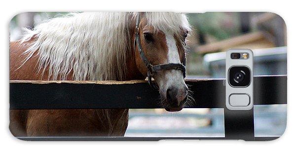 A Hilton Head Island Horse Galaxy Case