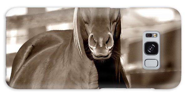 A Horse Is A Horse Galaxy Case by Deena Stoddard