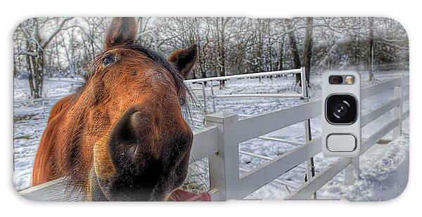 A Horse Is A Horse Galaxy Case
