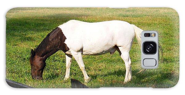 A Horse Named Dipstick Galaxy Case