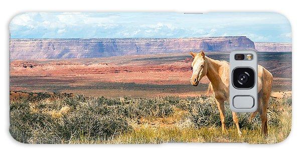 A Horse With No Name Galaxy Case