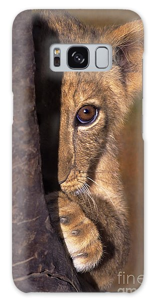 A Lion Cub Plays Hide And Seek Wildlife Rescue Galaxy Case by Dave Welling