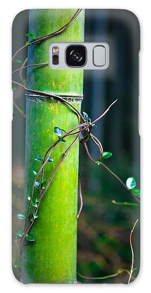 Galaxy Case featuring the photograph A Little Help From A Friend by Brad Brizek