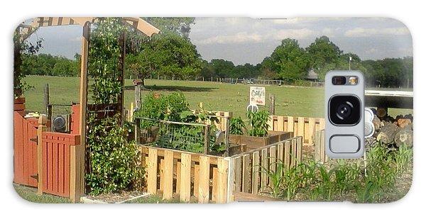A Look At Growing Garden Galaxy Case