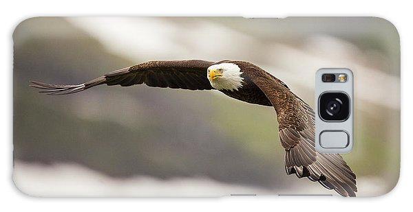 Condor Galaxy S8 Case - A Mature Bald Eagle In Flight by Tim Grams