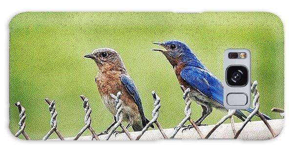 Nesting Bluebirds Galaxy Case