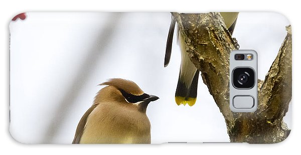 A Pair Of Cedar Waxwings Galaxy Case