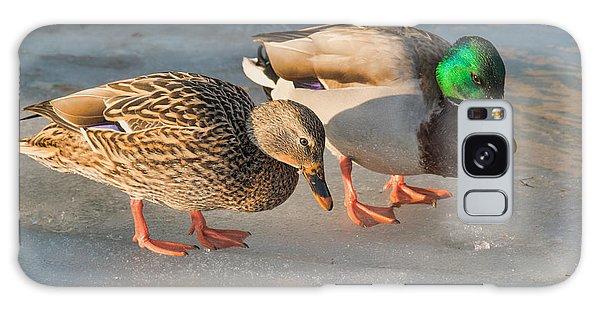 A Pair Of Mallards On Frozen Lake Galaxy Case by Gerda Grice