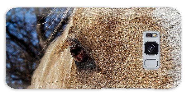 A Palomino's Eye. Galaxy Case